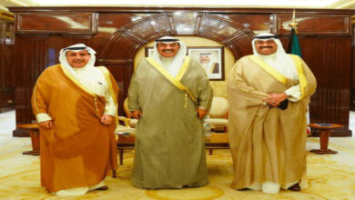 HH Prime Minister Receives New Aviation Chairman
